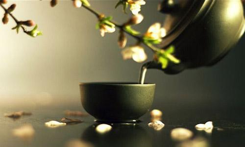 japan-tea
