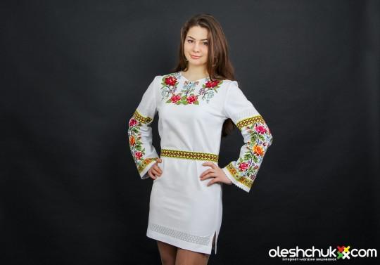 suchasni-zhinochi-vyshyti-plattja-ta-sukni-foto
